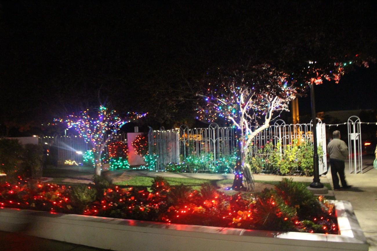 annual lighting program lights up lds