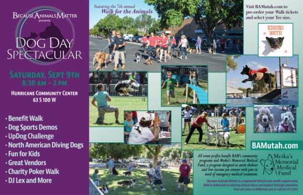 Because Animals Matter hosts 7th annual 'Dog Day ...