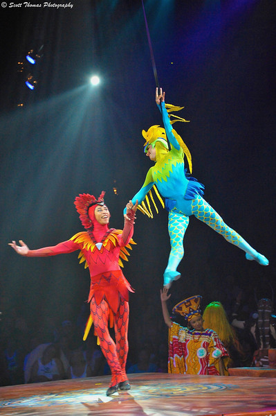 Flying for Love during the Festival of the Lion King stage show in Disney's Animal Kingdom.
