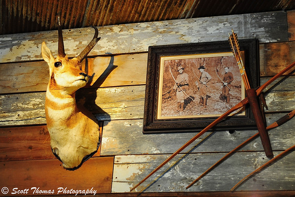 A pronghorn trophy hangs in the archery hunting department of the Bass Pro Shops of the Finger Lakes at the Finger Lakes Mall in Auburn, New York.
