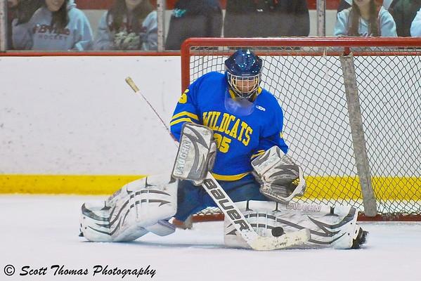 Hockey goalie making a save.