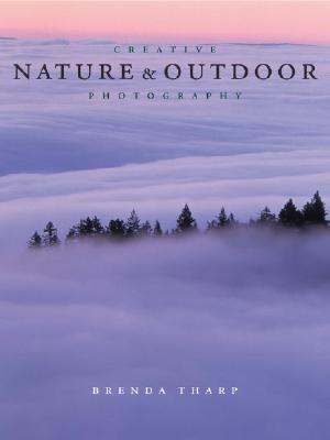 Creative Nature and Outdoor Photography is the photography book I will be reading for the month of January. Click the image for more Information.