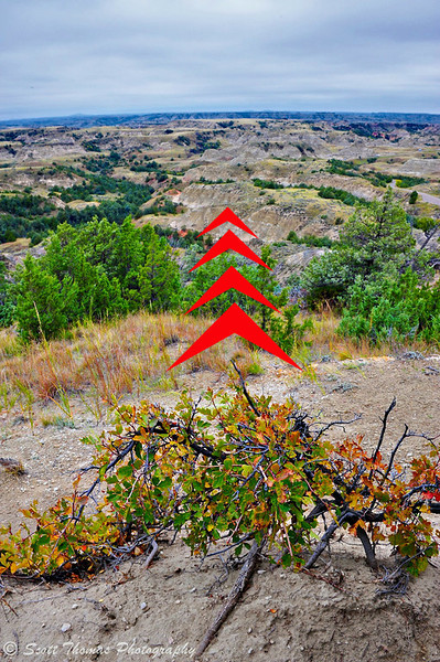 North Dakota Banlands from the Ridgeline Nature Trail in Theodore Roosevelt National Park near Medora, North Dakota.