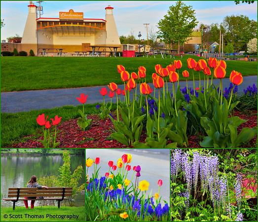 Photographs taken around the Village of Baldwinsville, New York, in the month of May.