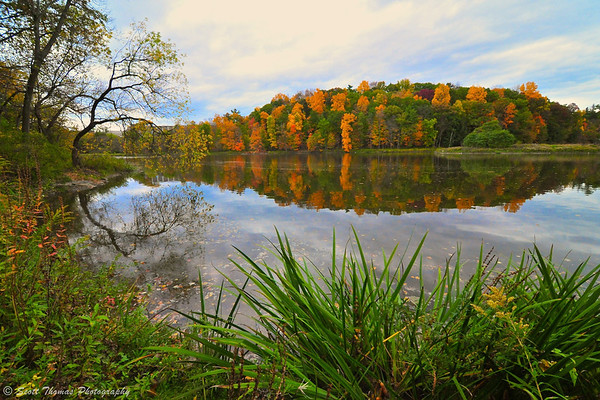 Colorful fall foliage reflected in Beebe Lake at Cornell University in Ithaca, New York.