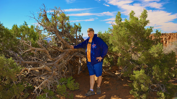 Blog author standing among Nevada Cedars on the Grand View Point Overlook trail in Canyonlands National Park near Moab, Utah.