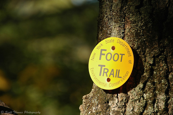 A New York State Department of Environmental Conservation Foot Trail marker on a Prospect Mountain trail near Lake George, New York.