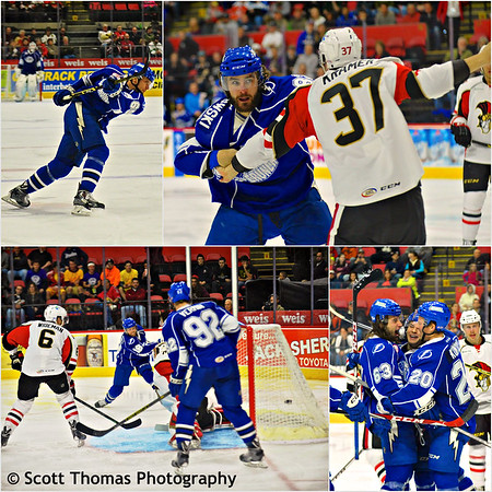 Syracuse Crunch game against the Binghamton Senators on Saturday, November 1, 2014.