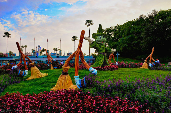 Sorcerer Mickey Mouse topiary in front of Disney's Hollywood Studios.