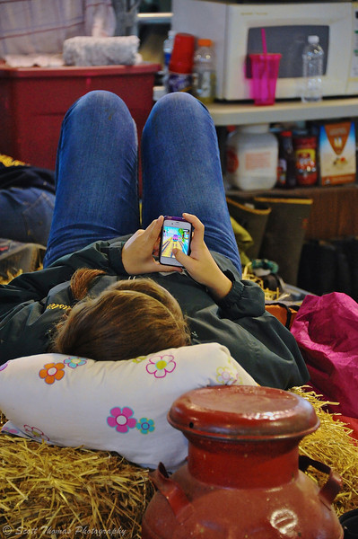 Girl in the Dairy Cattle Barn passing time by playing a video game on her smartphone at the Great New York State Fair in Syracuse, New York.