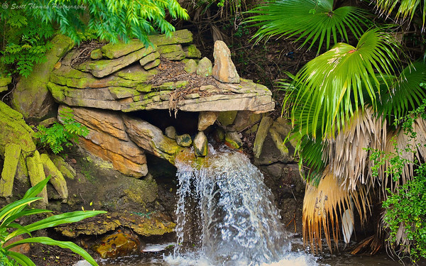 Dragon waterfall in Disney's Animal Kingdom, Walt Disney World, Orlando, Florida.