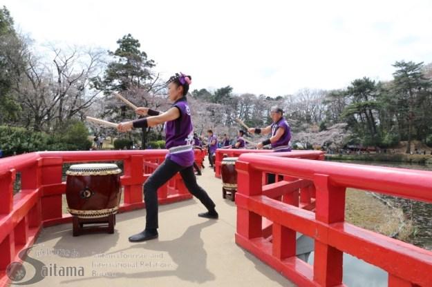 Iwatsuki Castle Park Cherry Blossom Festival