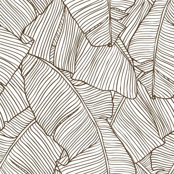Papel de Parede Adesivo Folhas Bananeira Contorno
