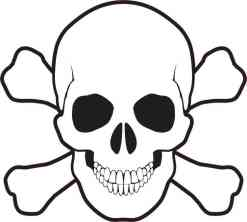 skull and cross bones bumper sticker
