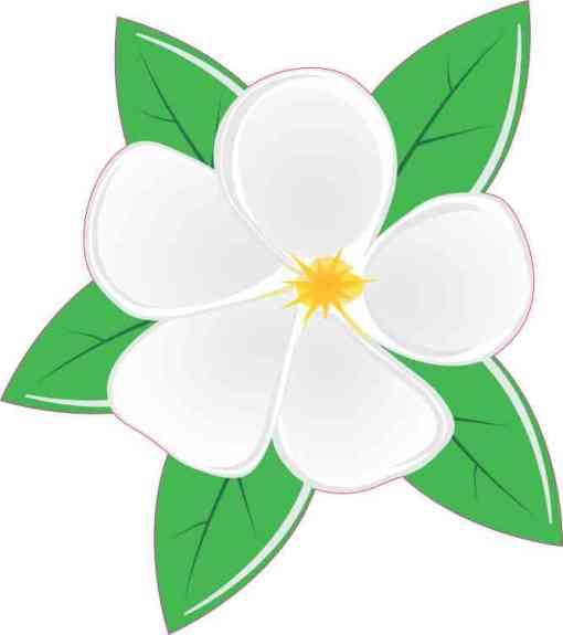 Magnolia Sticker