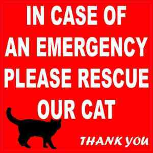 In Case Of An Emergency Please Rescue Our Cat Magnet