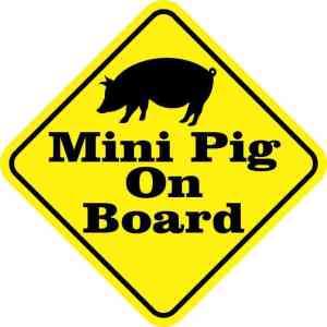 Mini Pig On Board Magnet