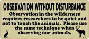 Green Observation Without Disturbance Sticker