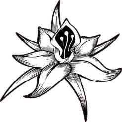 White Flower Sticker