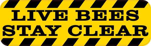 Live Bees Stay Clear Magnet