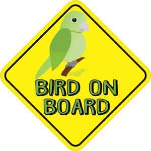 Green Bird On Board Magnet