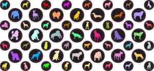 StickerTalk® Dog Camera Dots® Webcam Covers