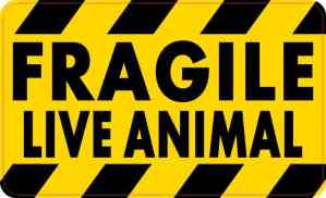 Fragile Live Animal Sticker