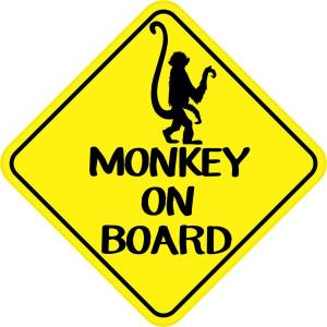 Monkey on Board Magnet