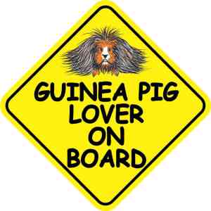 Guinea Pig Lover on Board Magnet