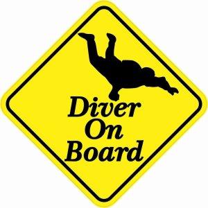 Skydiving Diver On Board Magnet