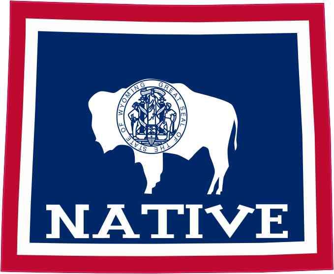 45in X 35in Wyoming Flag Native Sticker Stickertalk