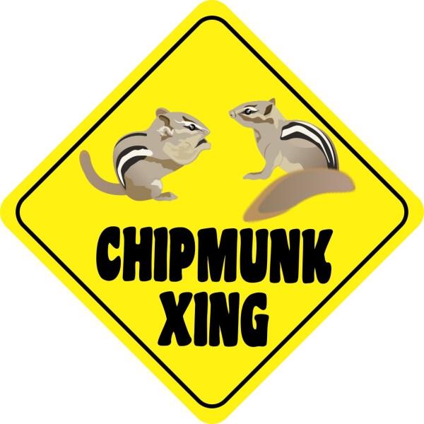 Chipmunk Crossing Magnet