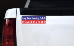 Any Functioning Adult President 2020 Bumper Sticker