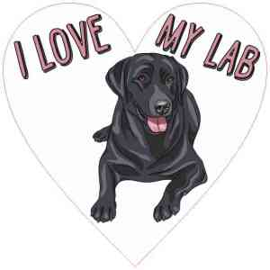 Heart I Love My Lab Sticker