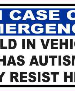 Child in Vehicle Has Autism Magnet
