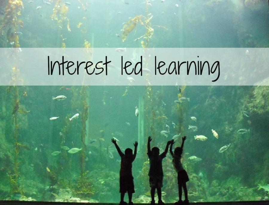 interest led learning