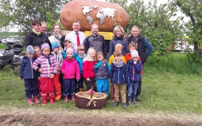 Die Fröbelkinder hatten viel Spaß beim Kartoffellegen