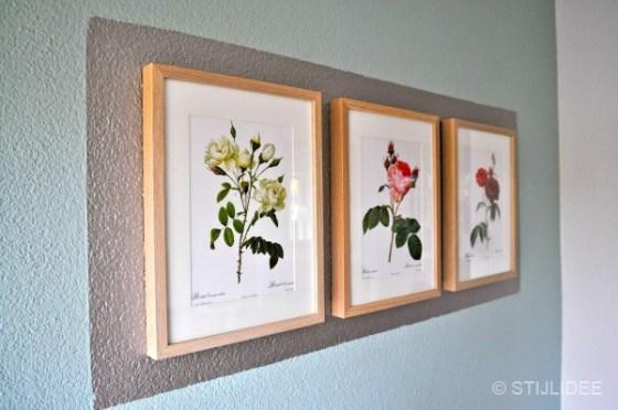 Lijsten met vintage rozen illustraties