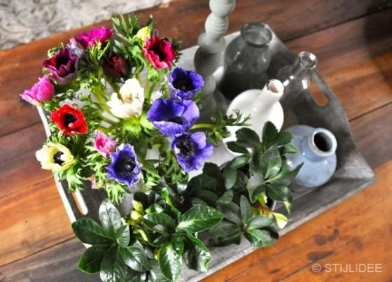 Haal de lente in huis met een botanisch interieur | Fotografie: STIJLIDEE Interieuradvies en Styling