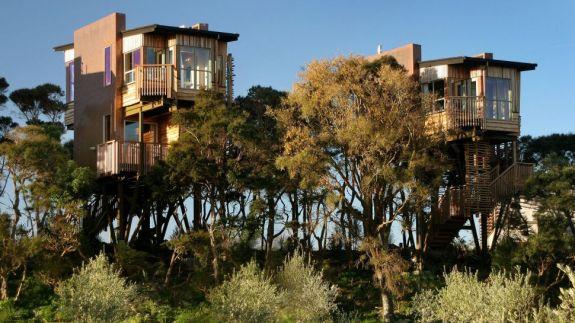 Hapuku Lodge + Tree Houses boomhut