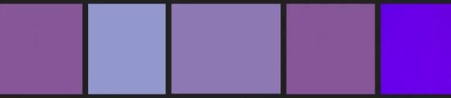 Buitenleven | Lavendel = tuinplant van de maand april - lavendel kleuren