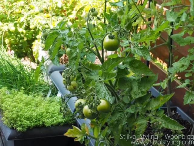 Buitenleven | 'Urban farming' oftewel stadstuinieren - www.stijlvolstyling.com