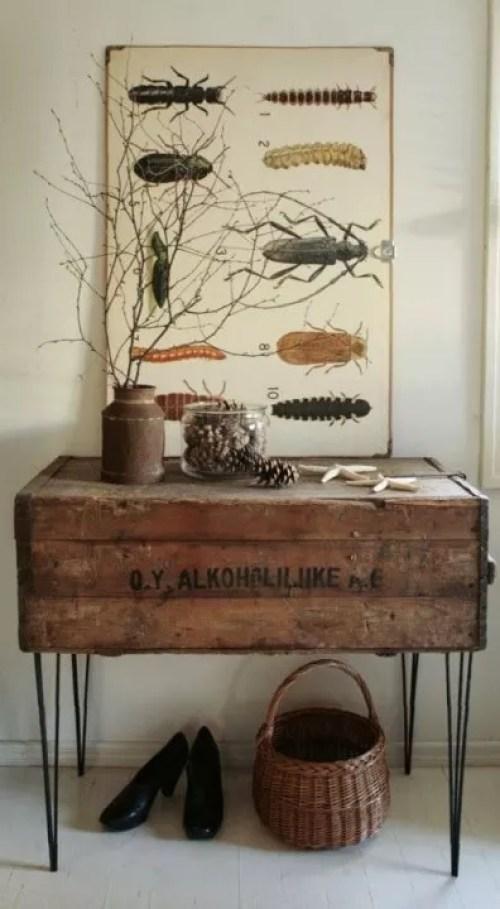 Interieur trends insecten als interieur decoratie for Interieur decoratie