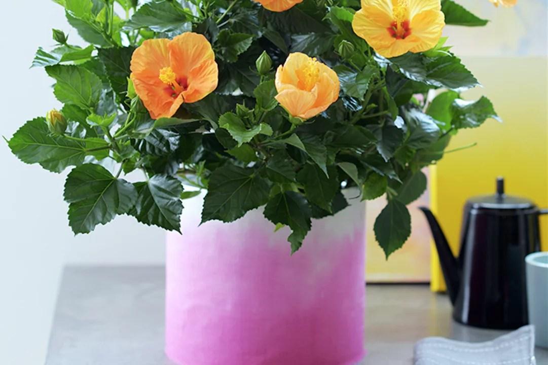 DIY |Dip-dye bloempot maken! Stijlvol Styling woonblog www.stijlvolstyling.com