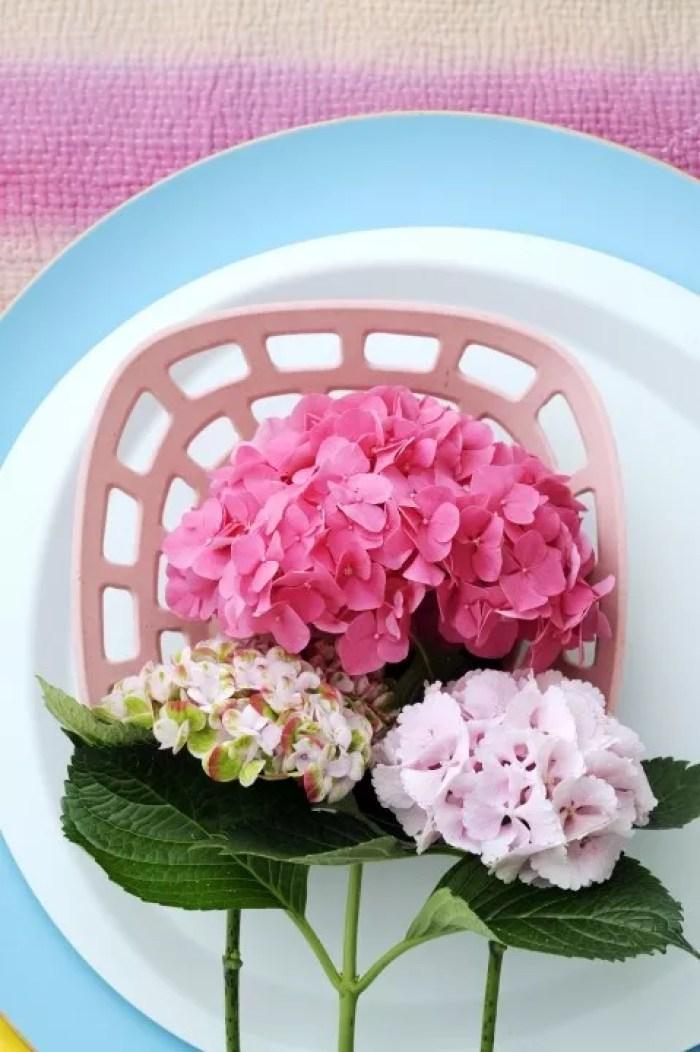 Hortensia - Stijlvol Styling woonblog