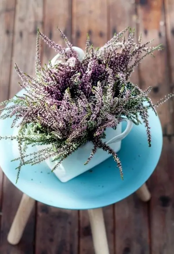 Buitenleven | Struikheide = Tuinplant vd Maand september - Stijlvol Styling woonblog www.stijlvolstyling.com