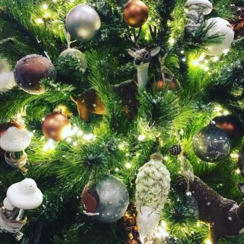 Overall trend Go Greenor Go Home! Image Groen, groener, groenst. Naast de vijf stijlen is er één overkoepelend thema voor de aankomende feestdagen. Groen. De urban jungle-trend maar dan in kerstsferen! Dit uit zich in bijzondere kerstboomvervanger zoals de Araucaria heterophylla (ook wel bekend als de kamerden), een pinusboompje, pinustakken of de eucalyptus en in natuurlijke (groene) kerstdecoratie zoals kokodama. Daar kun je heel gemakkelijk zelf mee aan de slag, kijk hier voor een toffe DIY. Image