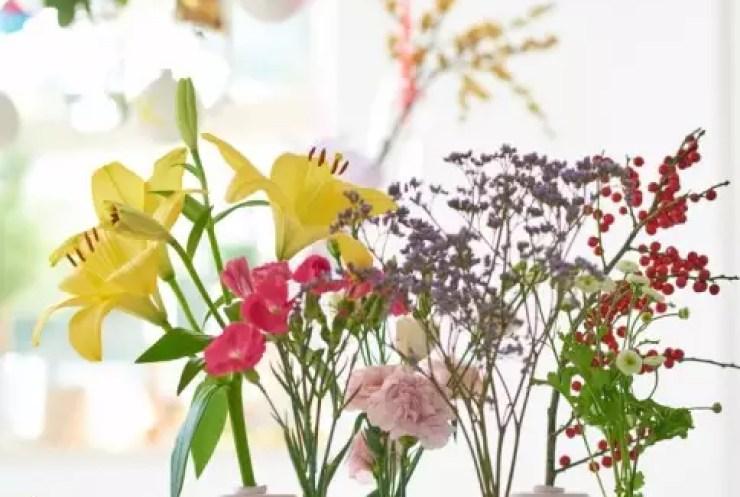 Groen wonen | Kerst met de planten & bloemen van 2015 - Woonblog StijlvolStyling.com
