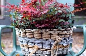 Nandina in de herfst tuin | Buitenleven | 9x de mooiste herfst tuinplanten - Woonblog StijlvolvolStyling.com