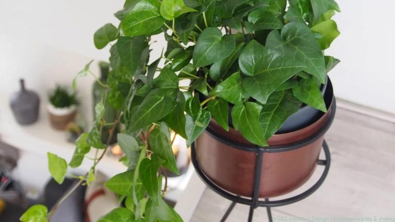 Woontrends | 10x op de natuur geïnspireerd wonen - Woonblog StijlvolStyling.com ©SBZ-Interieur-Design-Interieuradvies-Interieurontwerp-styling-Loft-Amsterdam-5-reportage-door-Woonblog-StijlvolStyling.com